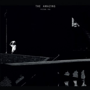 The Amazing - Picture You, omslag
