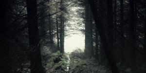 machinista_album