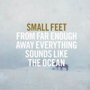 Small Feet, omslag