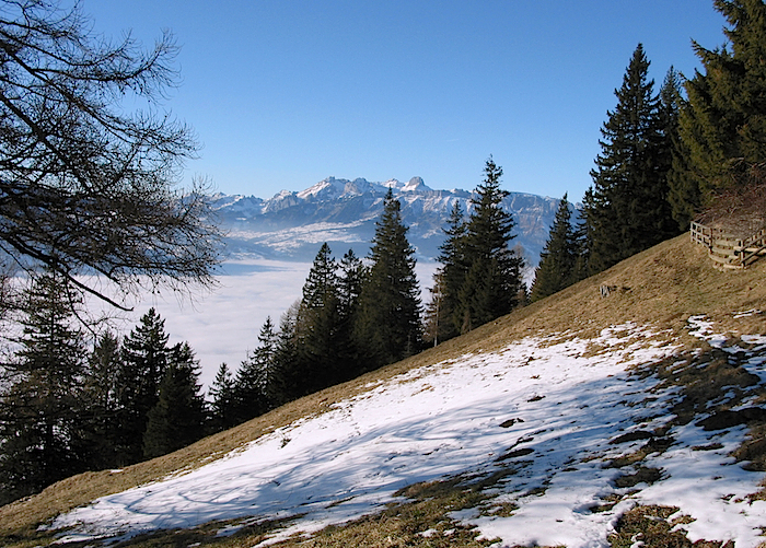 Nebelgebirge