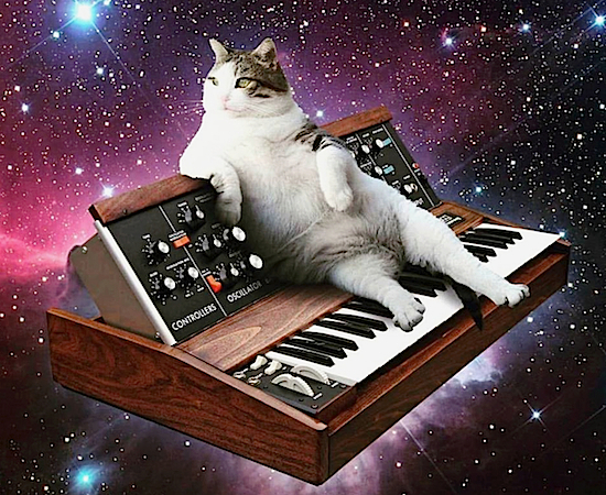 CatsynthUL